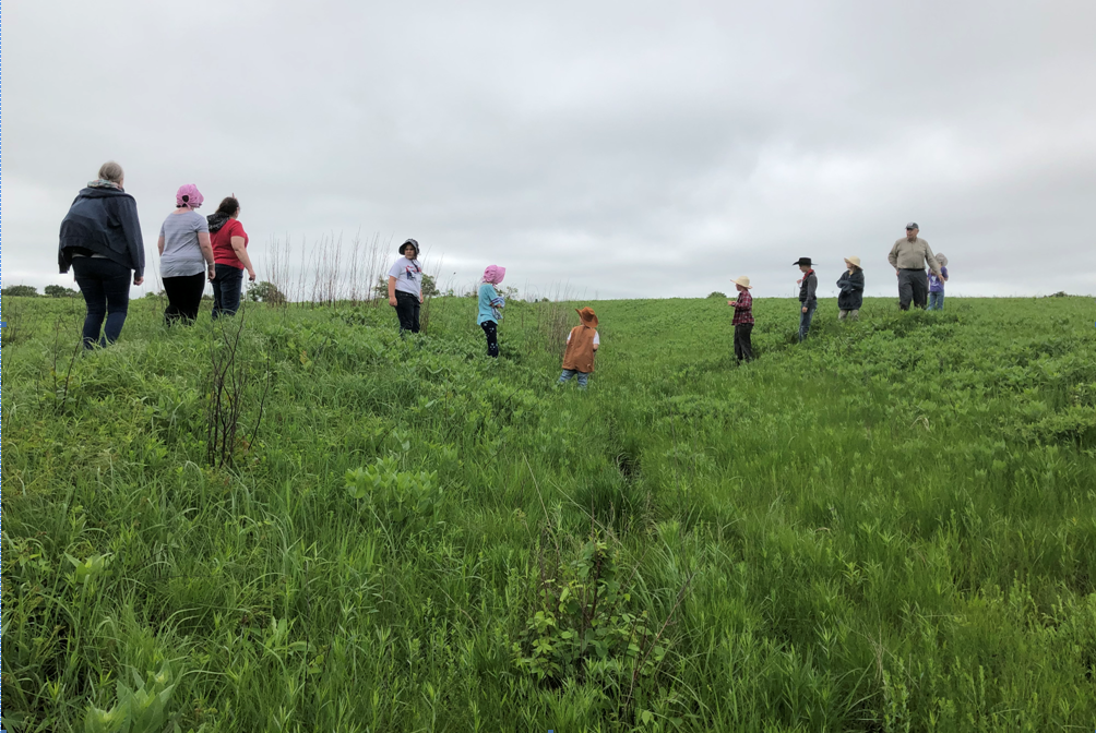 Children and adults walk through a field of native grass where deep Santa Fe Trail ruts are preserved.